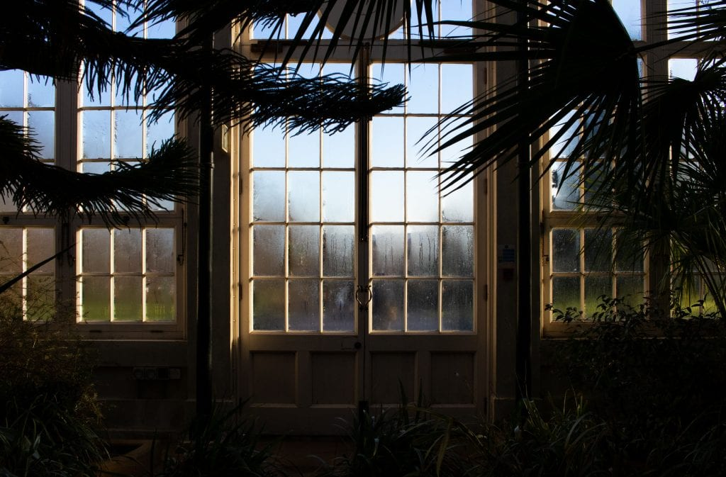Orangeries: Image of the interior of an orangery at dusk.