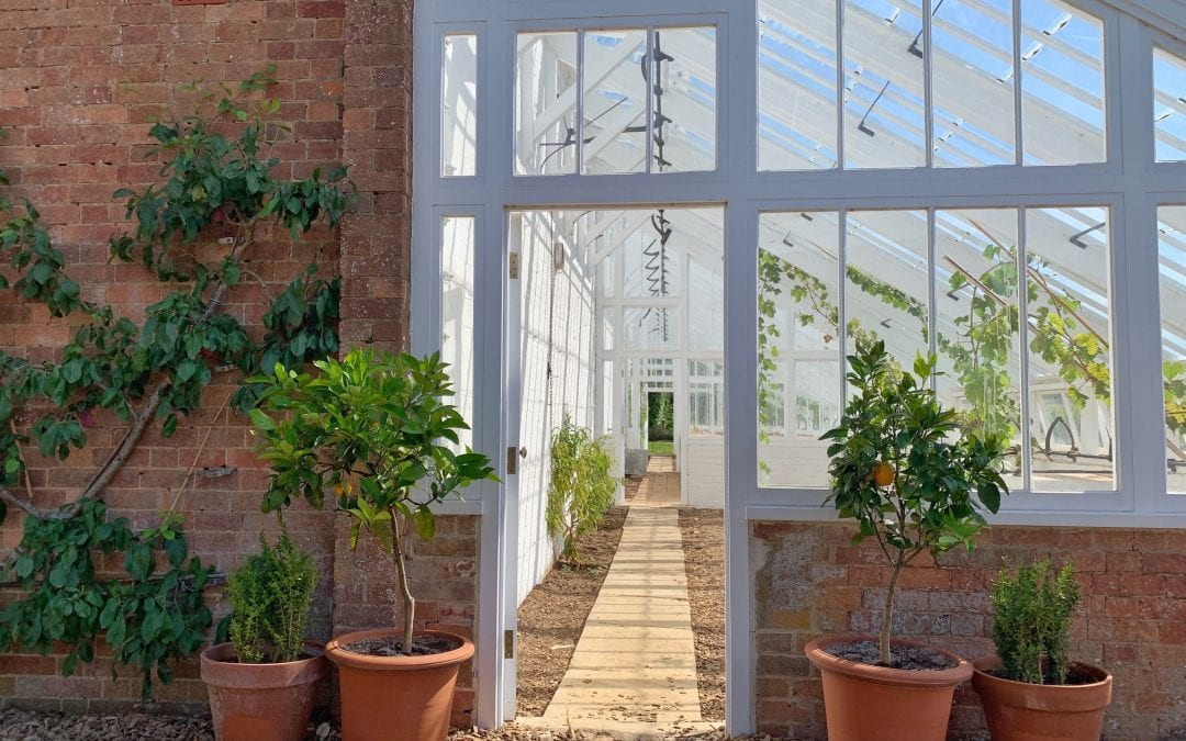 Orangeries: Image of the side view of a red brick and white paned glass orangery.