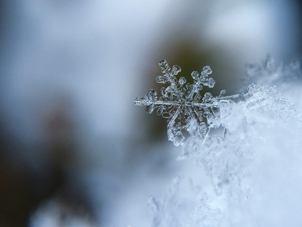 Common Conservatory Problems: Close up image of a snowflake.